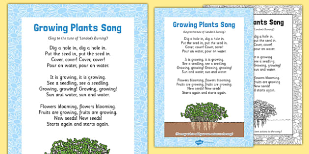 Growing Plants Song - plant, seed, fruit, life cycle, tune, flower, growing, eyfs, early years, EAD