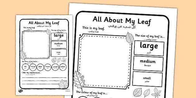 Leaf Worksheet Arabic Translation - arabic, leaf, worksheet, describe, compare