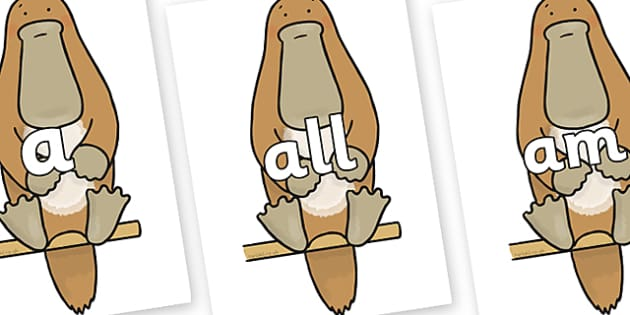 Foundation Stage 2 Keywords on Platypus to Support Teaching on The Great Pet Sale - FS2, CLL, keywords, Communication language and literacy,  Display, Key words, high frequency words, foundation stage literacy, DfES Letters and Sounds, Letters and So
