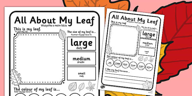 Leaf Worksheet Polish Translation - polish, leaf, worksheet, describe, compare