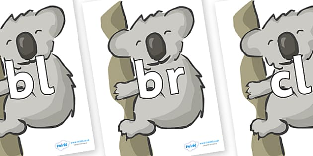 Initial Letter Blends on Koalas - Initial Letters, initial letter, letter blend, letter blends, consonant, consonants, digraph, trigraph, literacy, alphabet, letters, foundation stage literacy