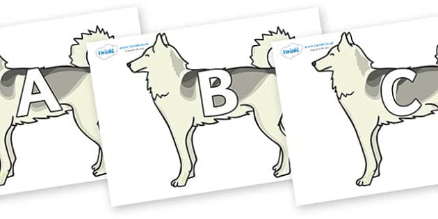 A-Z Alphabet on Huskies - A-Z, A4, display, Alphabet frieze, Display letters, Letter posters, A-Z letters, Alphabet flashcards