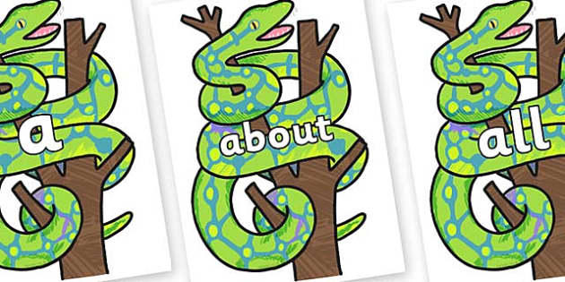 100 High Frequency Words on Boa Constrictor to Support Teaching on The Bad Tempered Ladybird - High frequency words, hfw, DfES Letters and Sounds, Letters and Sounds, display words