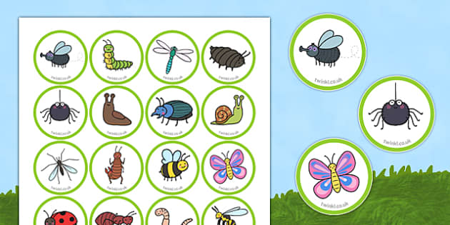 Minibeast Counters - EYFS, Early Years, maths, games, counting, pieces, tokens