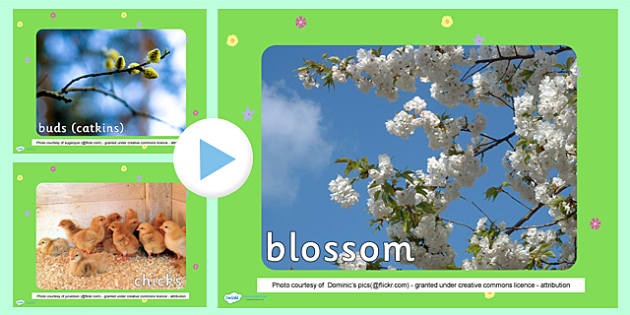 Spring Photo PowerPoint - spring, spring powerpoint, spring photos, powerpoint, spring images, spring images powerpoint, spring presentation