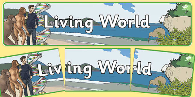 Living World Display Banner NZ - nz, new zealand, living world, display banner, display