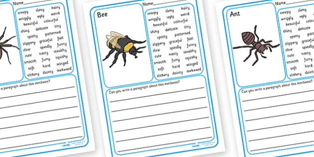 Minibeasts Description Writing Frames - writing frame, frame, writing, writing aid, minibeasts writing frames, description writing frames, descriptive writing, minibeasts descriptive writing, minibeast descriptions, writing template, template, litera