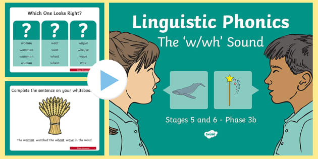 Linguistic Phonics Stage 5 and 6 Phase 3b, 'w, wh' Sound PowerPoint - Linguistic Phonics, Phase 3b, Northern Ireland, 'w', 'wh', sound, sound search, word sort, inv