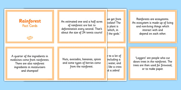 Rainforest Fact Cards - CfE, Social Studies, place, environment