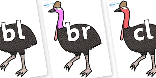 Initial Letter Blends on Cassowary - Initial Letters, initial letter, letter blend, letter blends, consonant, consonants, digraph, trigraph, literacy, alphabet, letters, foundation stage literacy