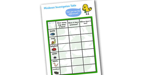 Minibeast Investigation Table - minibeast investigation, finding minibeasts, describing minibeasts, Minibeasts, Topic, Foundation stage, knowledge and understanding of the world, investigation, living things, snail, bee, ladybird, butterfly, spider