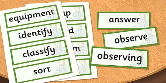 KS1 Working Scientifically Scientific Vocabulary Cards - science