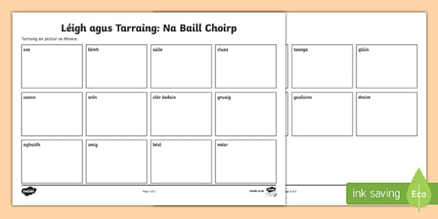 Parts of the Body Read and Draw Activity Sheet Gaeilge