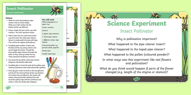Insect Pollinator Science Experiment and Prompt Card - pollination, pollinators, pollen, pollination experiment, pollination science experiment, insect pol
