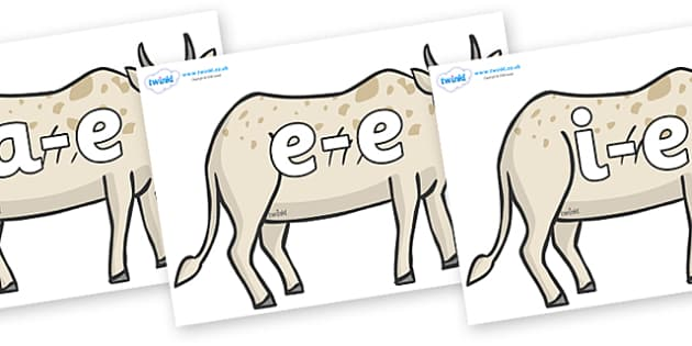 Modifying E Letters on African Ox - Modifying E, letters, modify, Phase 5, Phase five, alternative spellings for phonemes, DfES letters and Sounds