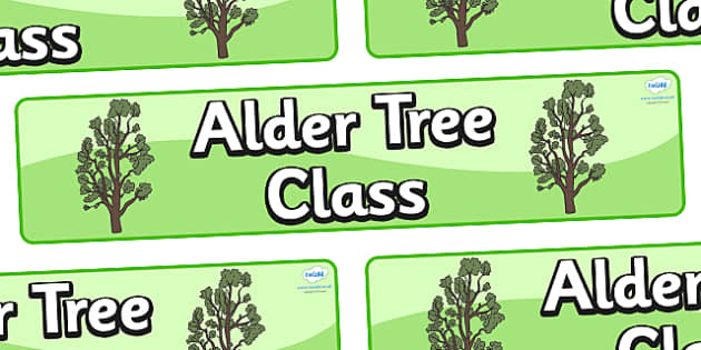 Alder Tree Themed Classroom Display Banner - Themed banner, banner, display banner, Classroom labels, Area labels, Poster, Display, Areas