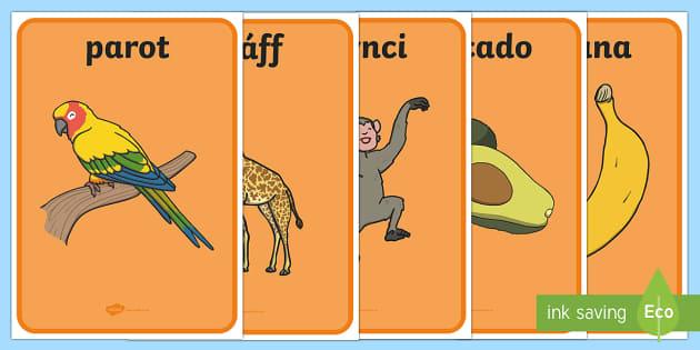 Sypreis Affrica Posteri Arddangos -  Sypreis Handa, Affrica, anifeiliaid, CYmraeg, Cyfnod Sylfaen,Welsh