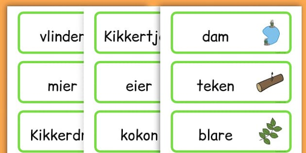 Life Cycle Word Cards - life cycles, lifecycle, visual aid, words - Afrikaans