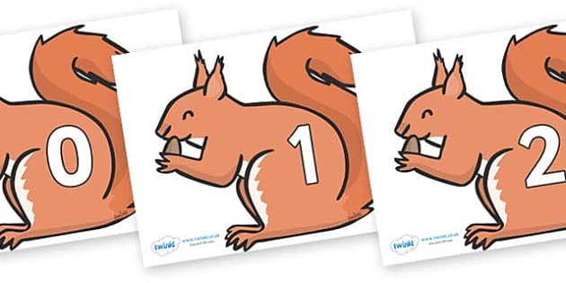 Numbers 0-50 on Red Squirrels - 0-50, foundation stage numeracy, Number recognition, Number flashcards, counting, number frieze, Display numbers, number posters
