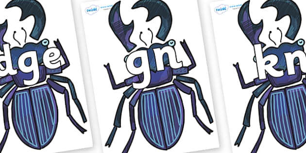 Silent Letters on Stag Beetle to Support Teaching on The Bad Tempered Ladybird - Silent Letters, silent letter, letter blend, consonant, consonants, digraph, trigraph, A-Z letters, literacy, alphabet, letters, alternative sounds