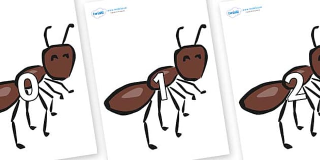 Numbers 0-31 on Ants - 0-31, foundation stage numeracy, Number recognition, Number flashcards, counting, number frieze, Display numbers, number posters