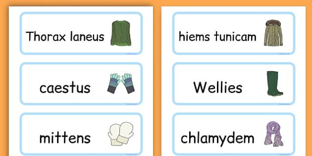 Winter Clothes Word Cards - winter clothes, word cards, winter, clothes - Latin
