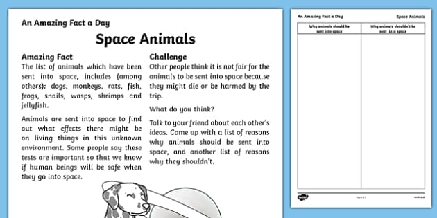 Space Animals Activity Sheet, worksheet