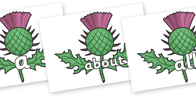 100 High Frequency Words on Scottish Thistles - High frequency words, hfw, DfES Letters and Sounds, Letters and Sounds, display words