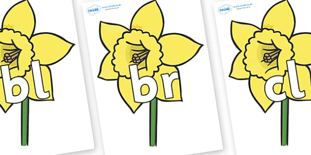 Initial Letter Blends on Daffodils - Initial Letters, initial letter, letter blend, letter blends, consonant, consonants, digraph, trigraph, literacy, alphabet, letters, foundation stage literacy