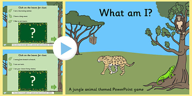 Jungle Animals What Am I Interactive PowerPoint Game - jungle animals, interacive powerpoint, interactive, powerpoint, interactive games, jungle powerpoint
