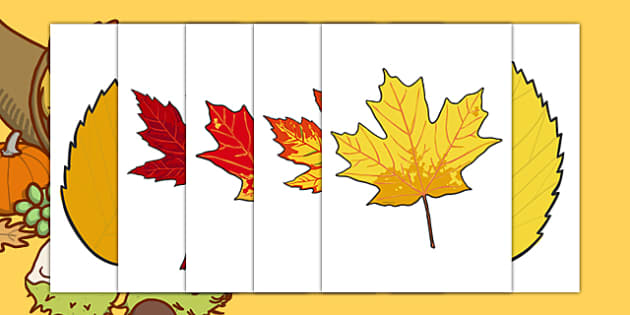 Editable Fall Leaves - fall, fall display, seasons, weather, leaf