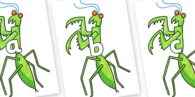 Phase 2 Phonemes on Praying Mantis to Support Teaching on The Bad Tempered Ladybird - Phonemes, phoneme, Phase 2, Phase two, Foundation, Literacy, Letters and Sounds, DfES, display