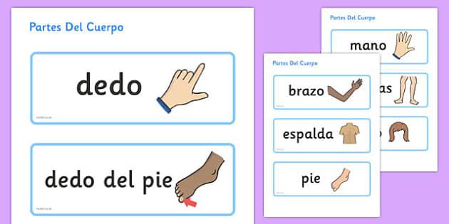 Partes Del Cuerpo Topic Word Cards Spanish - spanish, parts, body, topic, word, cards