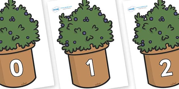 Numbers 0-50 on Plants - 0-50, foundation stage numeracy, Number recognition, Number flashcards, counting, number frieze, Display numbers, number posters