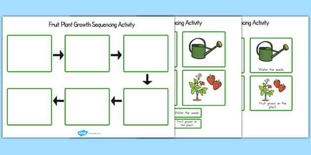 Plant Growth Sequencing Activity - Australia, Plant, Growth, Grow