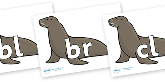 Initial Letter Blends on Sealions - Initial Letters, initial letter, letter blend, letter blends, consonant, consonants, digraph, trigraph, literacy, alphabet, letters, foundation stage literacy