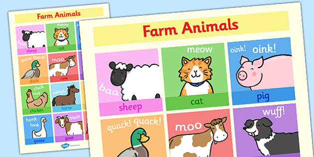 Farm Animals Display Poster - posters, displays, farms, visual