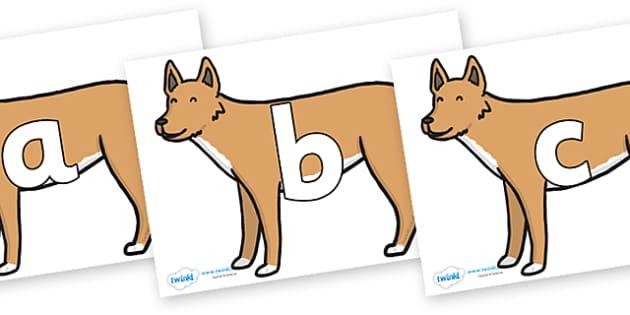 Phoneme Set on Dingo - Phoneme set, phonemes, phoneme, Letters and Sounds, DfES, display, Phase 1, Phase 2, Phase 3, Phase 5, Foundation, Literacy