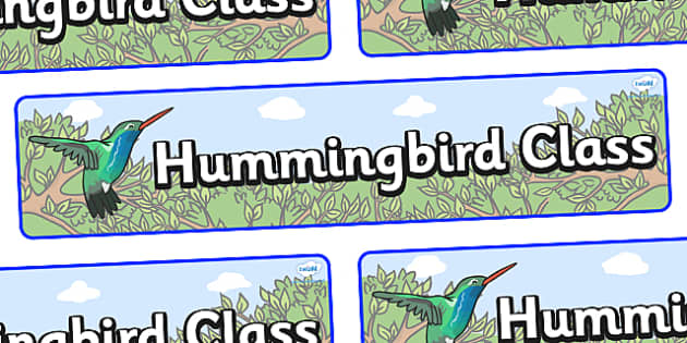 Hummingbird Themed Classroom Display Banner - Themed banner, banner, display banner, Classroom labels, Area labels, Poster, Display, Areas