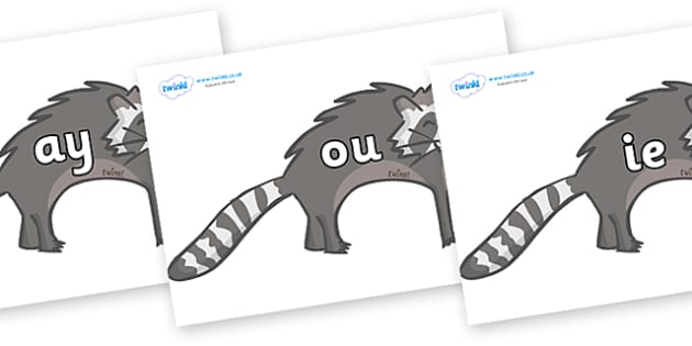 Phase 5 Phonemes on Raccoons - Phonemes, phoneme, Phase 5, Phase five, Foundation, Literacy, Letters and Sounds, DfES, display