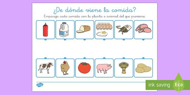 Ficha: ¿De dónde viene la comida? - origen de la comida, comer sano, comida saludable, comer bien, comer saludable, cosecha,Spanish