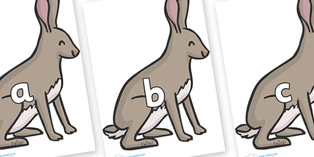 Phase 2 Phonemes on Hares - Phonemes, phoneme, Phase 2, Phase two, Foundation, Literacy, Letters and Sounds, DfES, display