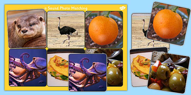 Initial o Sound Photo Matching Board and Cards - sounds, phonics