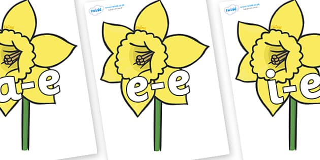 Modifying E Letters on Daffodils - Modifying E, letters, modify, Phase 5, Phase five, alternative spellings for phonemes, DfES letters and Sounds