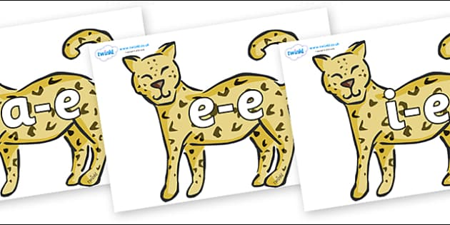 Modifying E Letters on Leopards - Modifying E, letters, modify, Phase 5, Phase five, alternative spellings for phonemes, DfES letters and Sounds