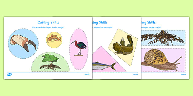 Australian Mangrove Habitat Cutting Skills Worksheet - australia, Science, Year 1, Habitats, Australian Curriculum, Mangroves, Living, Living Adventure, Environment, Living Things, Animals, Plants, Cutting Skills, Fine Motor