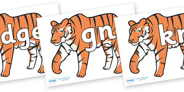 Silent Letters on Tigers - Silent Letters, silent letter, letter blend, consonant, consonants, digraph, trigraph, A-Z letters, literacy, alphabet, letters, alternative sounds
