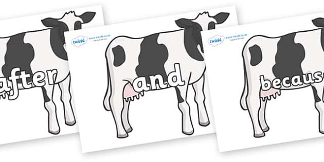 Connectives on Cows - Connectives, VCOP, connective resources, connectives display words, connective displays