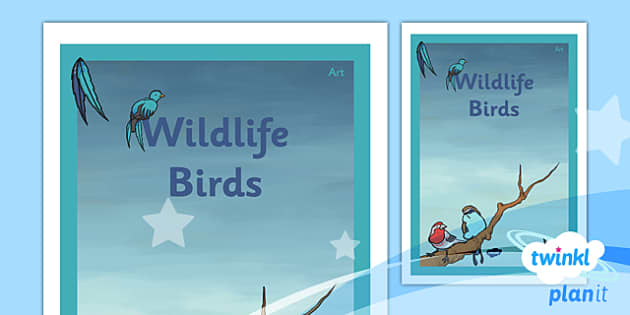 PlanIt - Art UKS2 - Wildlife Unit Book Cover - planit, book cover, art, uks2, wildlife
