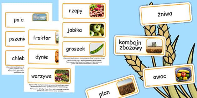 Kluczowe słowa Żniwa po polsku - jesień, zboże, owoce, wrzesień , Polish